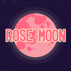 ROSE MOON Zine (2019) – Digital Download